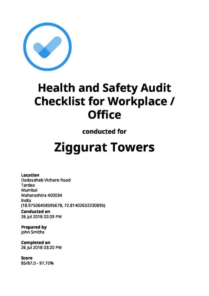 health and safety audit report example