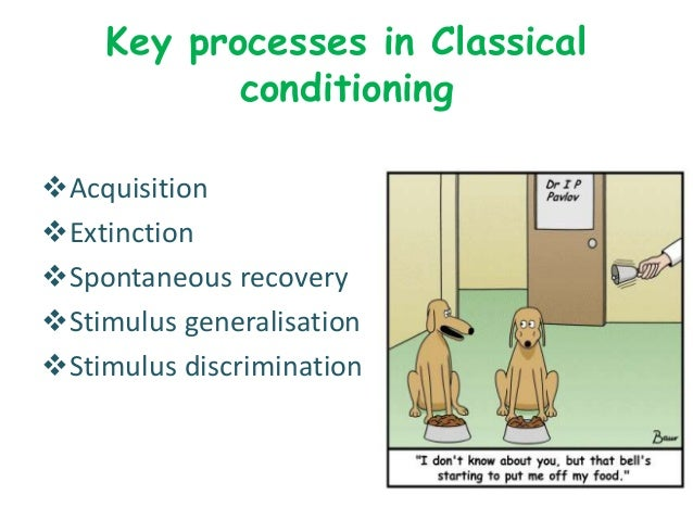 an example of extinction in classical conditioning