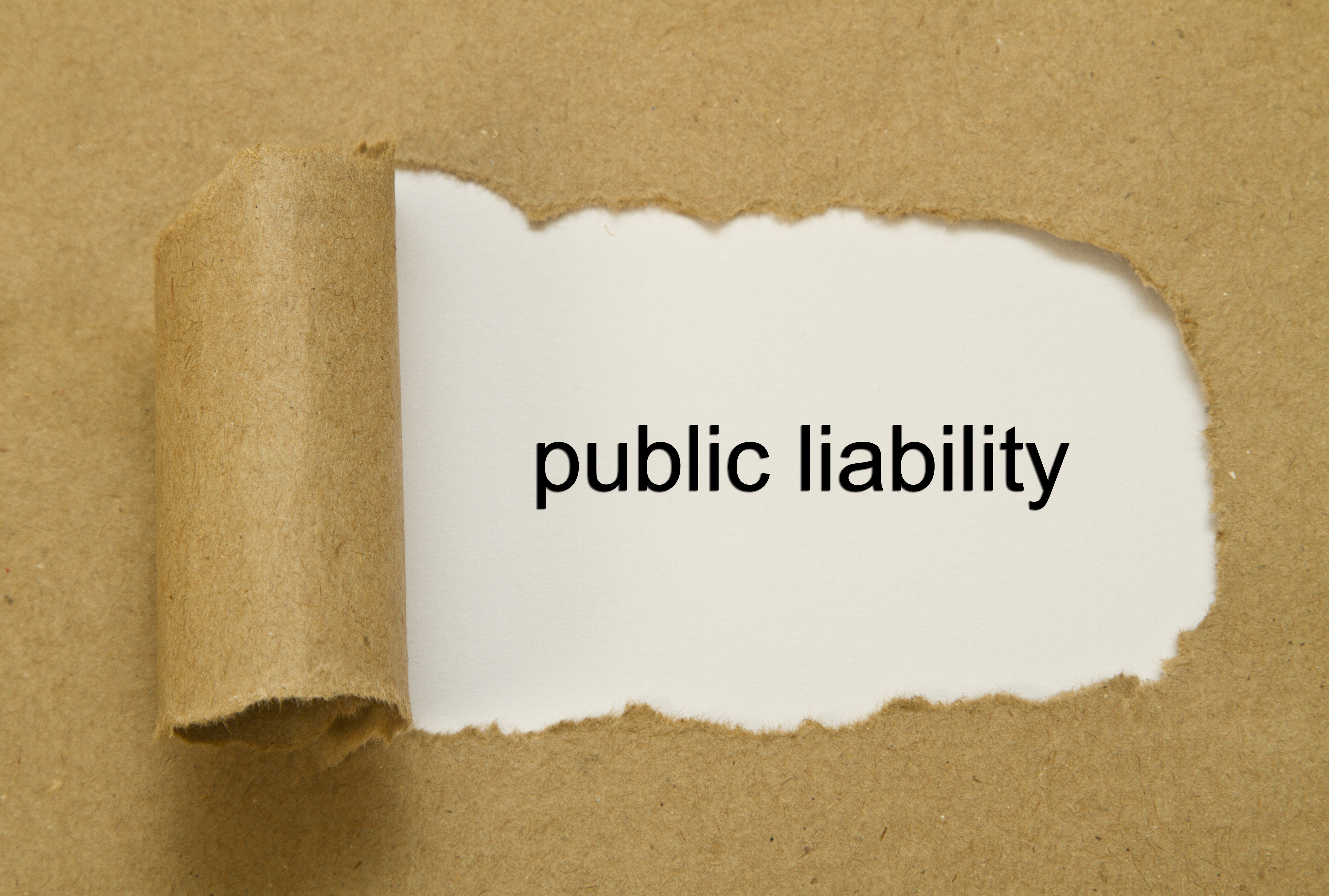 public liability insurance claims example