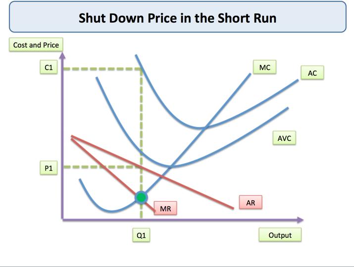 example of short run in economics