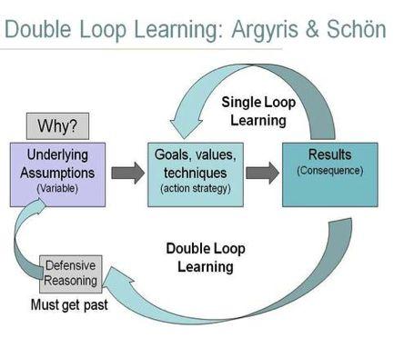 single loop learning organisation example