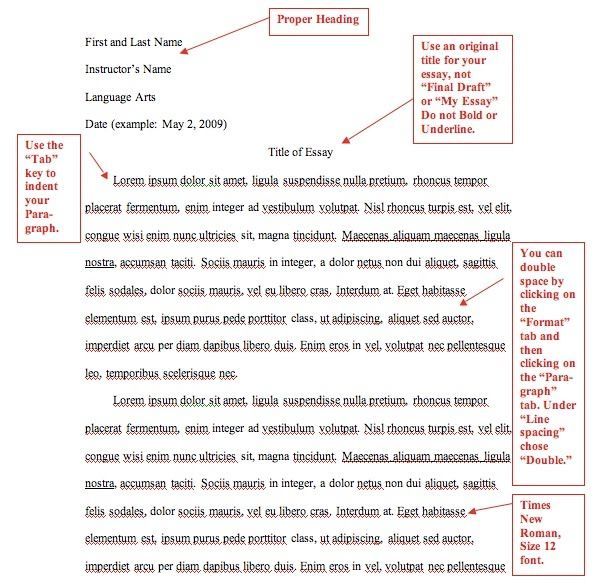 mla book in text citation example
