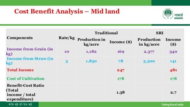 benefit cost ratio analysis example