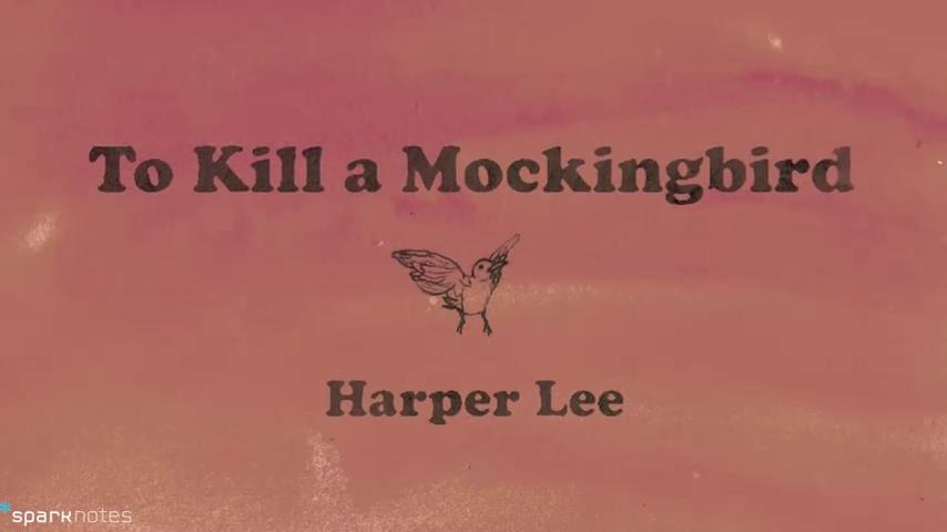 to kill a mockingbird book review example